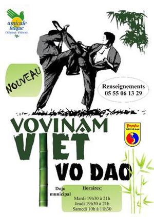 NOUVELLE ACTIVITE : Le VO VI NAM