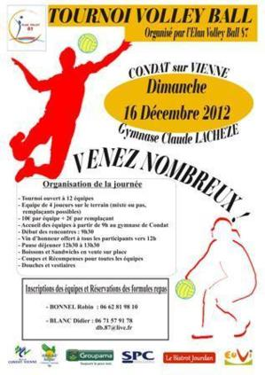 TOURNOI VOLLEY-BALL 2012