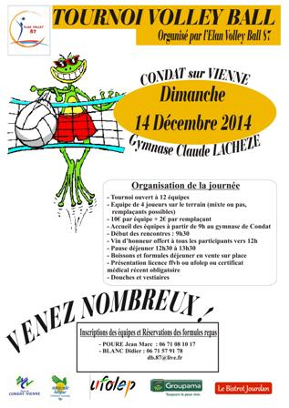 TOURNOI DE VOLLEY 2014